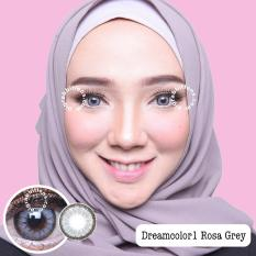 Dreamcolor1 Rosa Grey Softlens Minus 00 Normal Gratis Lenscase Terbaru