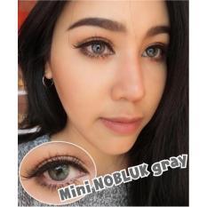 Jual Dreamcolor1 Softlens Mini Nobluk Minus 75 Grey Gratis Lens Case Dki Jakarta Murah