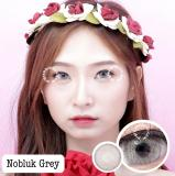 Jual Dreamcolor1 Softlens Nobluk Grey Minus 2 25 Gratis Lens Case