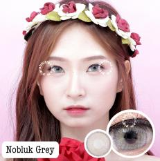 Harga Dreamcolor1 Softlens Nobluk Grey Minus 2 25 Gratis Lens Case New