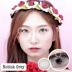 Dreamcolor1 Softlens Nobluk - Grey - Minus 2.50 + Gratis Lens Case