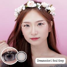 Promo Dreamcolor1 Soul Grey Minus 3 75 Gratis Lenscase
