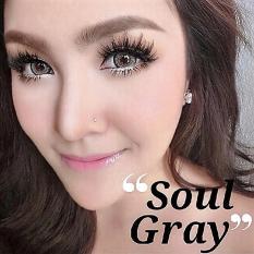 Jual Dreamcolor1 Soul Softlens Gray Free Lenscase Lengkap