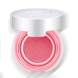 Jual Elife Professional Makeup Cosmetic Blush Blusher Powder Palette Air Cushion Blusher Peach Pink Intl Baru