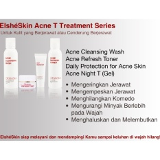 Elsheskin Acne T Treatment Series Diskon Indonesia