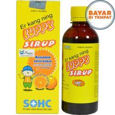 Er Kang Ning Luppy Sirup - Memperbaiki Nafsu Makan Anak Dan Pencernaan