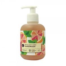 Review Esmeria Anti Bac Gentle Hand Wash Minty Citrus Sabun Cuci Tangan Organik