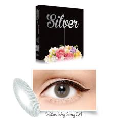 Exoticon - X2 Ice Silver Softlens - ICY Grey + Gratis Lenscase