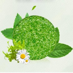 Modis Fragrance Memberi Nutrisi Alami Rambut Buatan Tangan Sabun Herbal Sehat Shampoo-Internasional