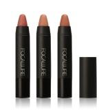 Harga Focallure Matte S*Xy Waterproof Lipstick Pen Makeup Cosmetic 2 Intl Oem Ori