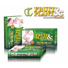 Fruit & Plant Slimming Capsule USA Obat Pelangsing Tubuh Herbal Alami Tercepat
