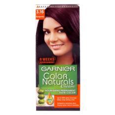 Garnier Color Naturals Cream Cat Rambut - Burgundy
