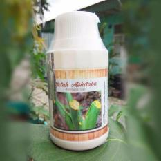 Getah ashitaba 100 ml
