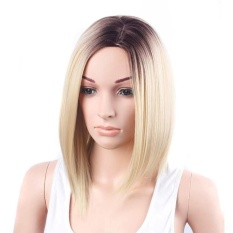 Gold Hair Lace Front Wig Long Straight Synthetic Wigs For Women Heat Friendly - intl