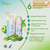 Tips Beli Green Angelica Hair Shampo Penumbuh Rambut Alami Obat Rambut Botak Rontok 100 Ori