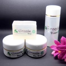 Kualitas Groosia Cream Jerawat Cream Pencerah Wajah Sunblock Wajah Spf 30 Kemasan Baru 4 Item Cream