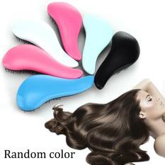 Hair Brush Combs Handle Tangle Tamer Tool Random Color - intl