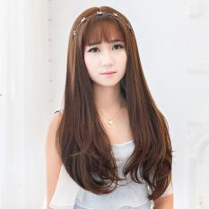 Hairclip Straight Natural 60cm Korea