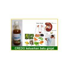 Herbal CREDO Obat Gagal Ginjal Terbebas Dari Cuci Darah