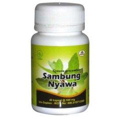 Herbal Insani Kapsul Sambung Nyawa - 40 kapsul