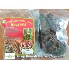 Herbal Sarang Semut Asli - 100 gr