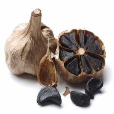 Jual Beli Herbal Suplemen Bawang Hitam Fermentasi Alami Untuk Kesehatan 250 Gram Baru Jawa Timur