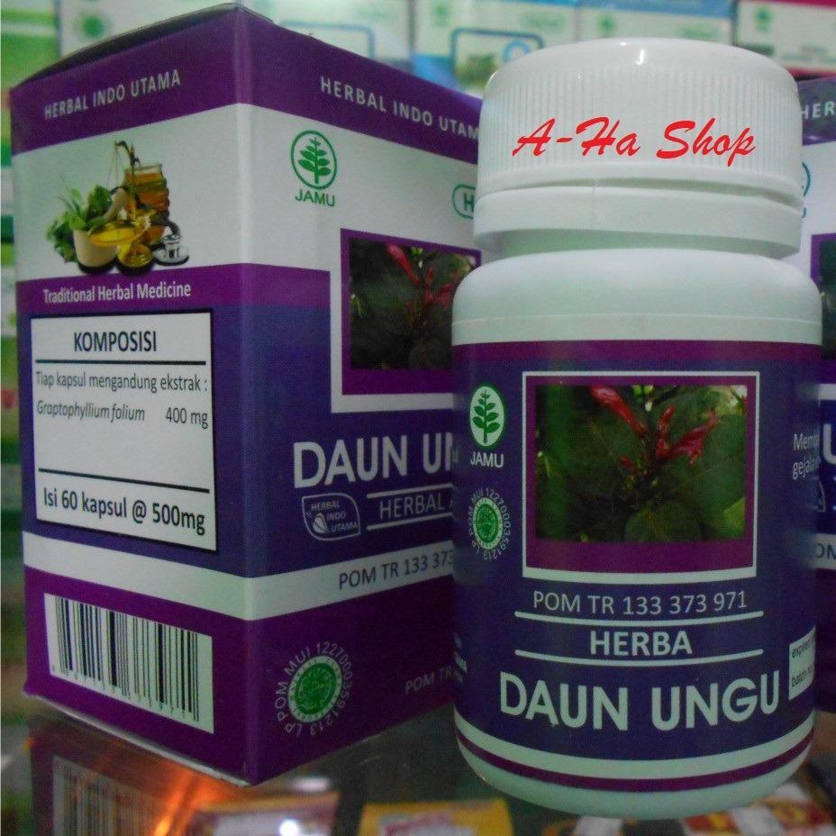 Shock Price HIU Daun Ungu Herbal Untuk Wasir - 60 Kapsul best price - Hanya Rp36.495