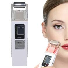ION Galvanic Microcurrent Kulit Firming Mesin Iontophoresis Anti Penuaan Massager Face Clean Perawatan Kulit SPA Salon Beauty Equipment- INTL