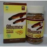 Spesifikasi Jamu Albumex Minyak Ikan Gabus Isi 60 Kapsul