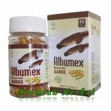Spesifikasi Kapsul Minyak Ikan Gabus Albumex 60 Kapsul Albumin Plus Terbaru