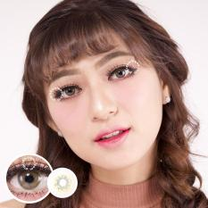 Harga Kitty Kawaii Bena Brown Softlens Minus 3 75 Gratis Lenscase Original