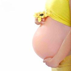 Harga Lifelike 6 7 Bulan 2000G Buatan Belly Silicone Perut Hamil Kehamilan Palsu Perut Untuk Wanita Dan Aktor Payudara Bentuk Intl Branded