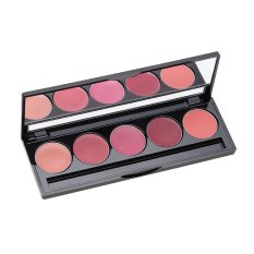 Situs Review Make Over Lip Color Palette Peplum Pink 02 5X1 7 G