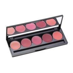 Spesifikasi Make Over Lip Color Palette Peplum Pink 02 5X1 7 G Lengkap Dengan Harga
