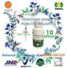 Beli Masker Wajah Spirulina Herbal Tiens 10 Kapsul Obat Jerawat Free Kuas Plate By Liman Group Baru