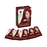 Katalog Maya Onyx Wine Red Herbal Hair Colouring Essence 22Ml X 5 Packs Pewarna Rambut Terbaru