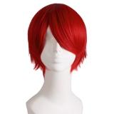 Spesifikasi Pesta Cosplay Wig Pria Pendek Lurus Oem Terbaru