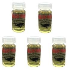 Minyak Penyu Bulus Asli [ 5 Botol ] Kualitas Super - Oleum Turtuca Javanica - Oles Luka Kulit