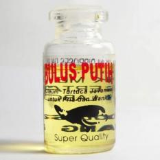 Toko Minyak Penyu Bulus Putih Oleum Turtuca Javanica Kualitas Super Obat Oles Kulit Luka Terlengkap Dki Jakarta