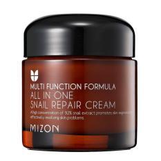 Jual Mizon All In One Snail Repair Cream 75Ml Original
