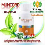 Promo Toko Muncord Solusi Herbal Buat Perokok Promo