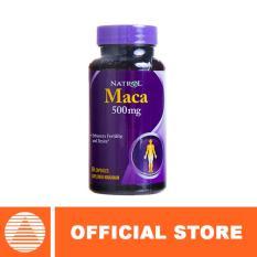 Natrol Maca Extract 500 MG (60 Caps)