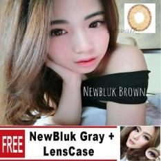 Beli Newbluk Softlens Brown Free Newbluk Gray Gratis Lenscase Online Terpercaya