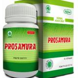 Toko Obat Herbal Asam Urat Prosamura Herbal Indo Utama Murah South Sumatra