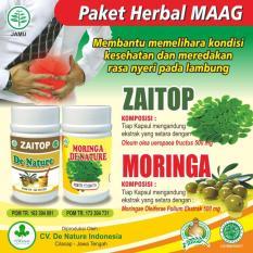 Review Obat Maagh Asam Lambung Herbal De Nature