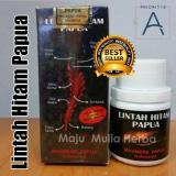 Jual Obat Oles Herbal Minyak Papua Lintah Hitam 60 Ml Herbal Di Indonesia