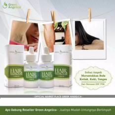 Spesifikasi Obat Penghilang Bulu Secara Tradisional Obat Perontok Bulu Ketiak Yang Aman Merk Green Angelica