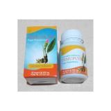 Review Obat Penyakit Dalam Temu Putih Toga Nusantara Herbal