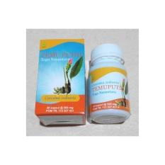 Obat Penyakit Dalam Temu Putih Toga Nusantara Herbal Asli