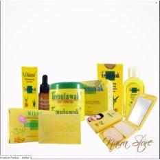 Paket Cream Temulawak Original Holo Super - Paket Super Komplit ( Cream, Sabun, Toner, Serum dan Bedak )